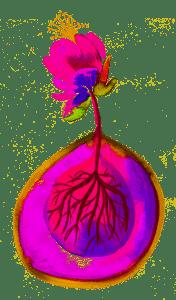 Logo Blossom Terapias