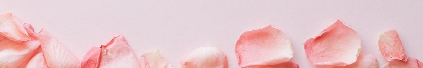 Sobre Barbara F Conti pétalos rosa